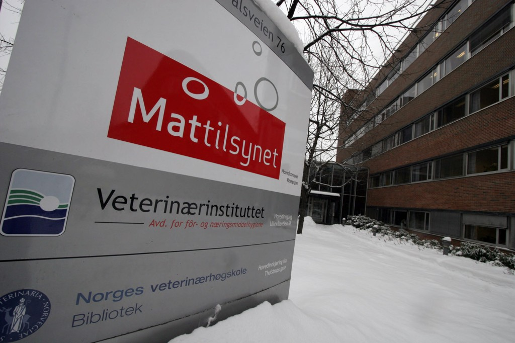 Mattilsynet har avdekket 30 tilfeller av alvorlig vanskjøtsel i løpet av årets fire første måneder. Foto: Jarl Fr. Erichsen / NTB scanpix