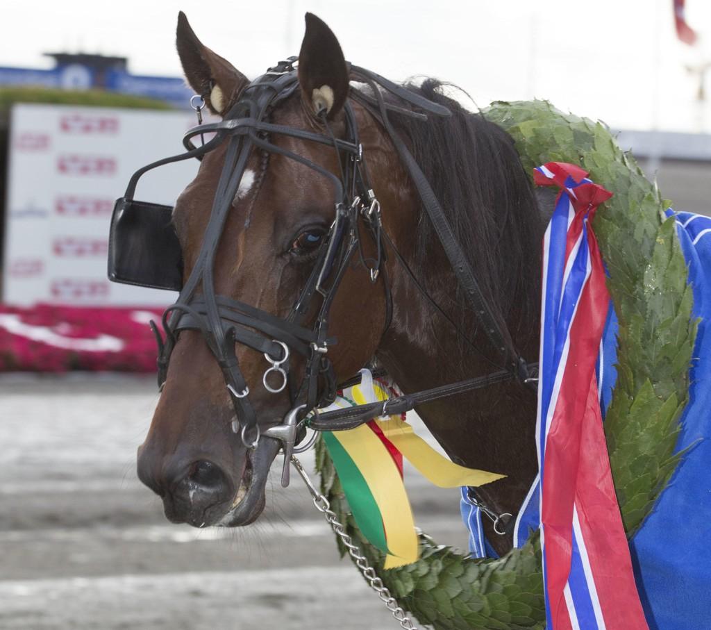 Det er dobbel V64-jackpot i vente på nasjonaldagen. Foto: Anders Kongsrud/www.hesteguiden.com.