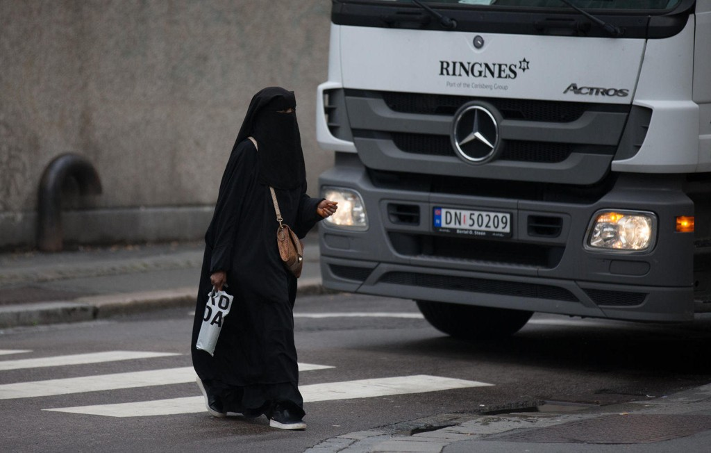 Fremskrittspartiet ønsker et totalforbud mot burka og nikab i det offentlige rom.