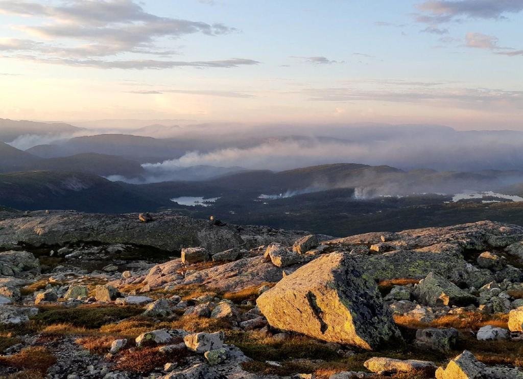 Torsdag ble det meldt om over 100 skogbranner i Sør-Norge. Blant de rammede områdene er Valle i Setesdal. Foto: Rolf Andre Grimsby / NTB scanpix