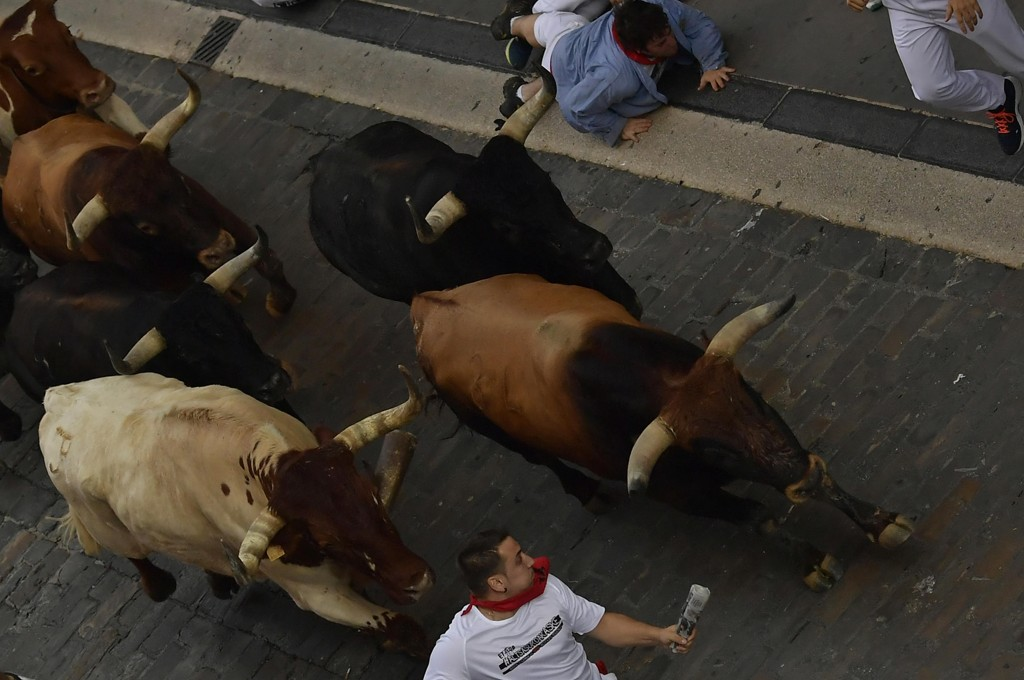 Vågale tilskuere løper sammen med oksene under San Fermin-festivalen i Pamplona. Det ender aldri godt for oksene, og noen ganger heller ikke bra for tilskuerne. Foto: AP / NTB scanpix