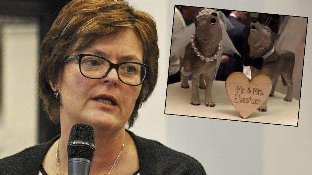 ULER MOT ULVER: Senterpartiets stortingsrepresentant Heidi Greni reagerer på ulvepynten på bryllupskaken til miljøstatsråd Ola Elvestuen (Venstre).