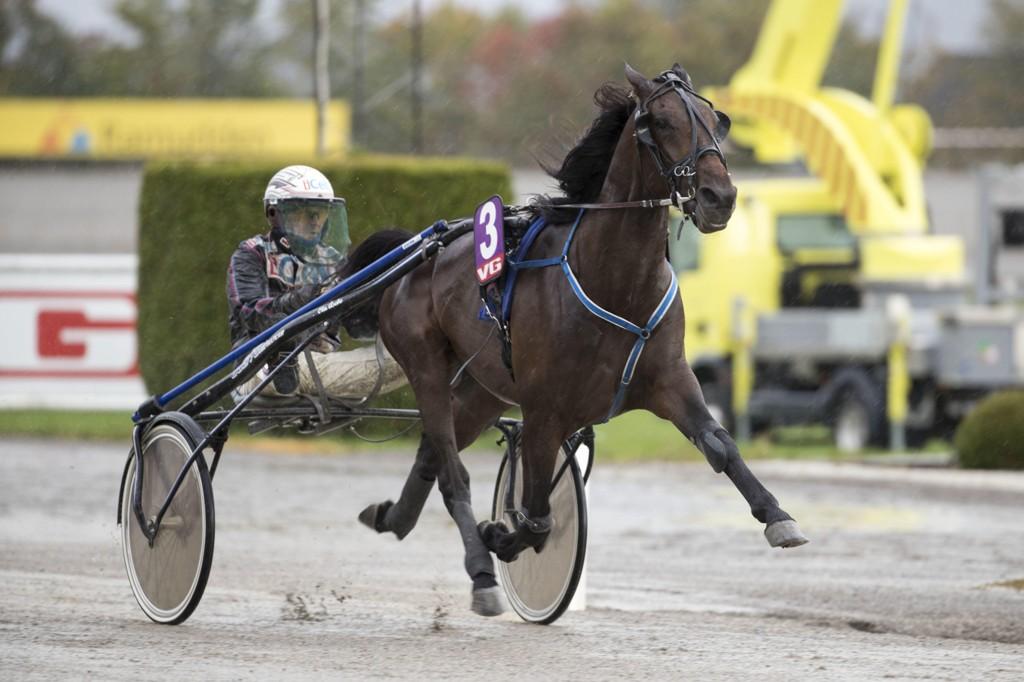 Ulf Ohlsson er aktuell i dagens V64-omgang. foto_Roger Svalsrød_hesteguiden.com
