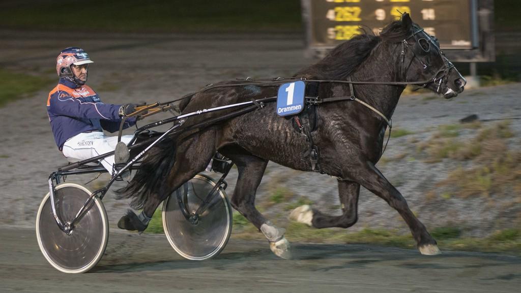 Vi tror Smedtulla og Olav Mikkelborg utfordrer den store favoritten! Foto: Anders Kongsrud/ www.hesteguiden.com.