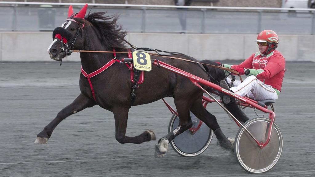 Tusse Storm har et veldig fint løp foran seg, og kan ta sin åttende seier i karrieren. Foto: Anders Kongsrud/www.hesteguiden.com.