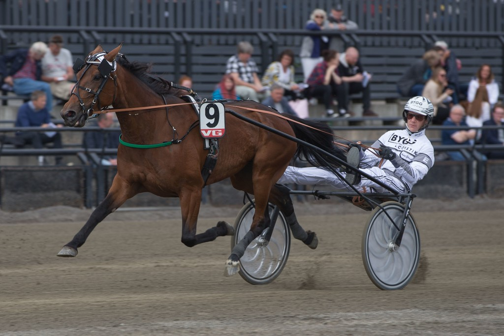 Andre Eklundh er aktuell i kveldens V64-omgang. Foto: Anders Kongsrud/www.hesteguiden.com.