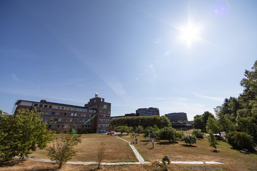 Sol og tørt gress hos Meteorologisk institutt på Blindern i Oslo i slutten av juli. Hittil i år er det målt over 2.100 soltimer her. Foto: Audun Braastad / NTB scanpix