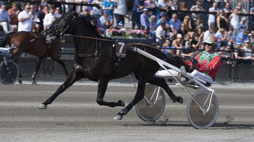 Stjernetraveren Takethem har ikke startet siden Oslo Grand Prix på Bjerke i juni. Søndag gjør hesten comeback etter skade sammen med sin trener og kusk Steen Juul i V65-6 på Charlottenlund. Foto: Anders Kongsrud/www.hesteguiden.com.
