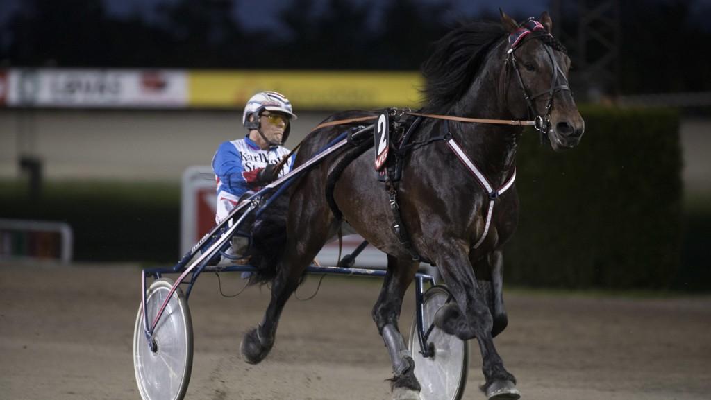Ove A Lindqvist er aktuell i dagens V65-omgang. foto_Roger Svalsrød_hesteguiden.com