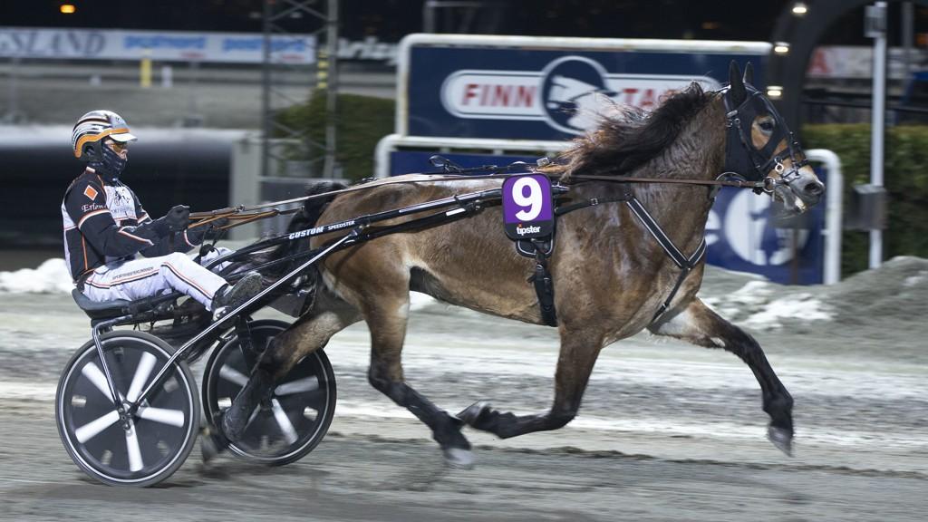 Børke Balderina har vært fantastisk bra i to strake seiersløp for Erlend Rennesvik. Lørdag blir hoppa en av Nettavisens to V75-bankere i Drammen. Foto: Anders Kongsrud/www.hesteguiden.com.