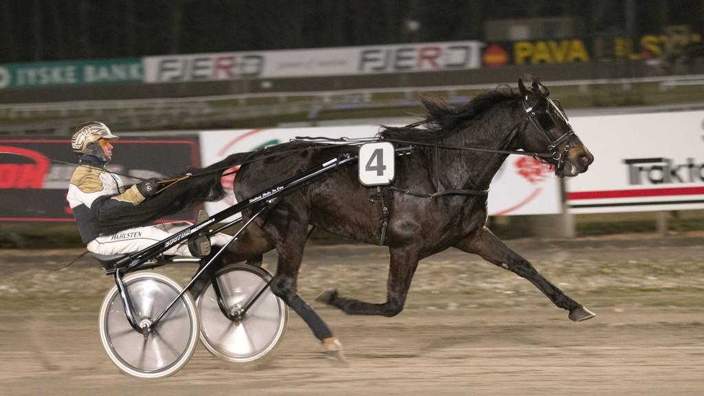 Birger Jørgensen (som her kjører prøveløp med hesten Chief One på Skive travbane) kusker Nettavisens V4-banker på Skive i dag. Foto: Morten Skifjeld/Hesteguiden.com