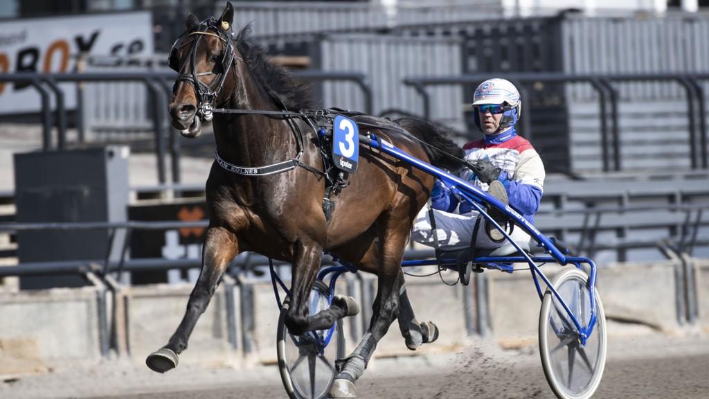 Lars Anvar Kolle og Chio Halbak imponerte sist, og har fine vinnermuligheter under V5-lunsjen på Bjerke. Foto: Roger Svalsrød/ hesteguiden.com