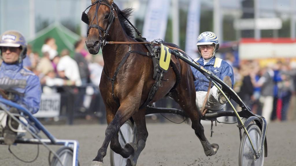 Stefan Melander er aktuell i kveldens V64-omgang på Solvalla. Foto: Roger Svalsrød: Hesteguiden.com
