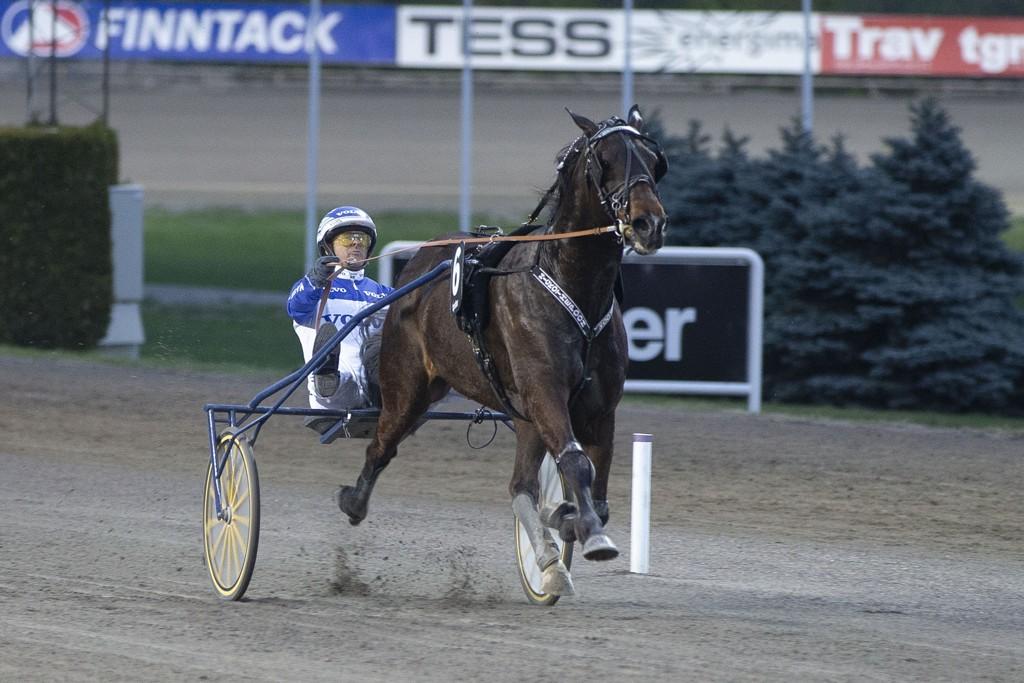 Hickothepooh og kusk Vidar Hop. Onsdag kommer de ut på Bjerke. Foto: Anders Kongsrud/www.hesteguiden.com.