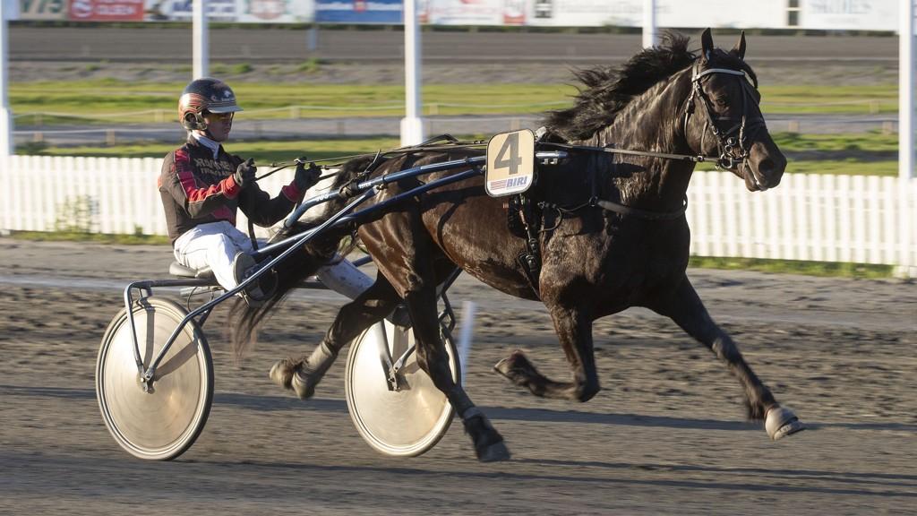 Rive Sjur er en talentfull traver vi har troen på i dag. Foto: Anders Kongsrud/ www.hesteguiden.com.