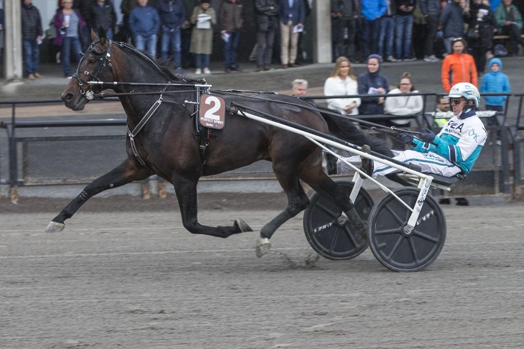 Örjan Kihlström er aktuell på Solvalla tirsdag. Foto Morten Skifjeld/Hesteguiden.com