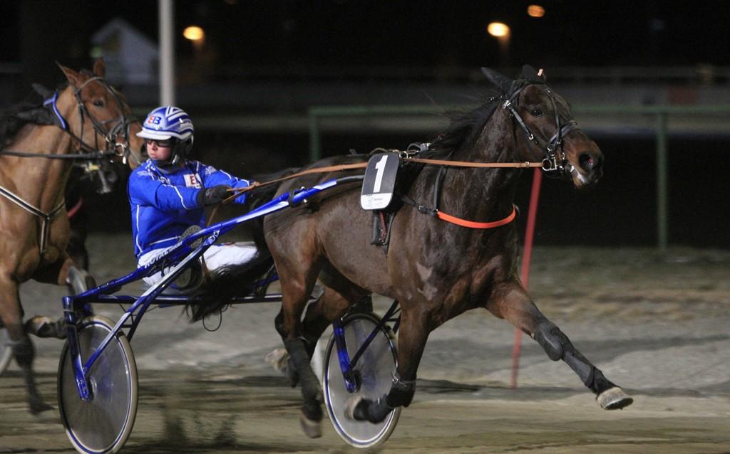 Rikard N. Skoglund er aktuell i kveldens V64-omgang. Foto: RJ.Auran/hesteguiden.com