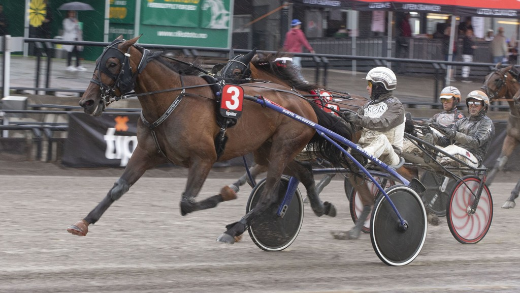 Princess Corner og kusk Eirik Høitomt har en flott oppgave foran seg i V75-5 i kveld og blir den ene av Nettavisens to V75-bankere. Foto: Anders Kongsrud/www.hesteguiden.com.