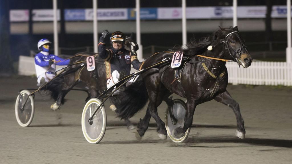 Kleppe Slauren og kusk Kjetil Djøseland blir Nettavisens V65-banker på Forus i kveld. Foto: Anders Kongsrud/www.hesteguiden.com.
