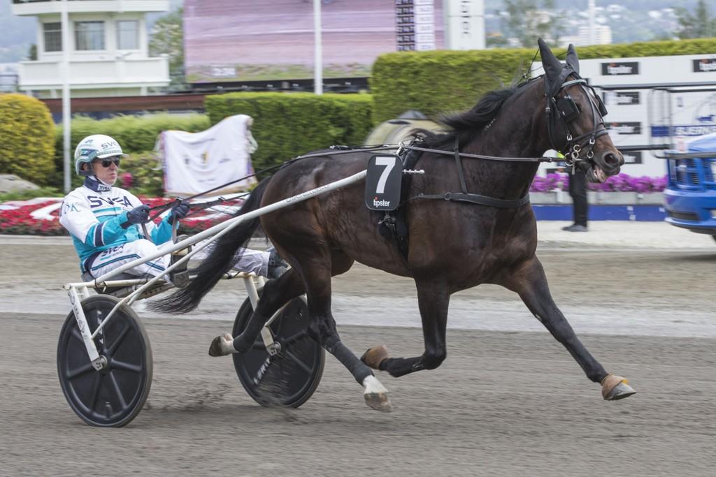 Örjan Kihlström er aktuell i kveldens V64-omgang. Foto Morten Skifjeld/Hesteguiden.com