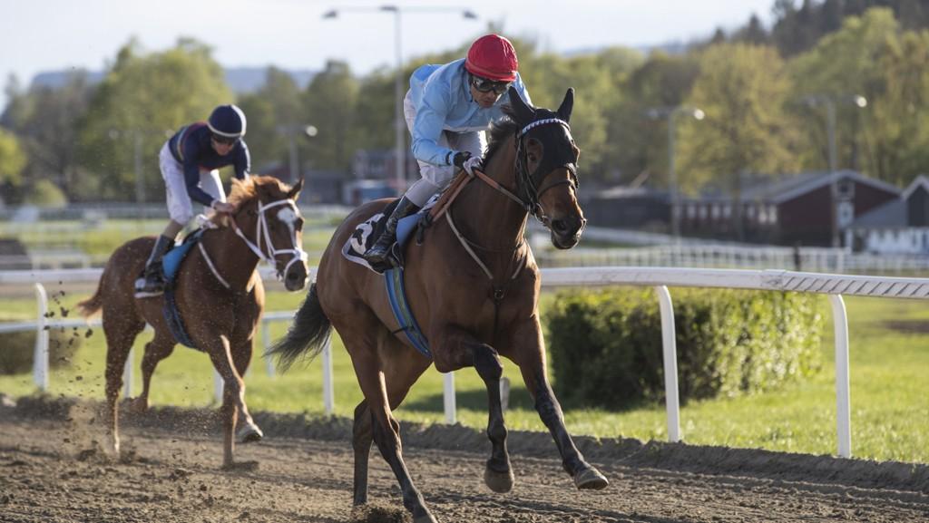 Carlos Lopez (som her vinner med Tinolo på Øvrevoll tidligere i år) er naturligvis på plass på Bro Park onsdag og rir blant annet Nettavisens V5-banker. Foto: Roger Svalsrød: Hesteguiden.com