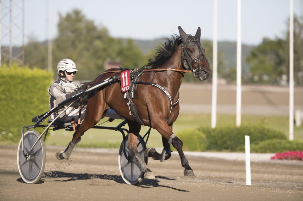 Magnus Jakobsson er aktuell i dagens lunsjomgang. foto_Roger Svalsrød_hesteguiden.com
