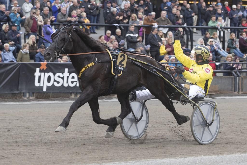 Grisle Odin G.L og Øystein Tjomsland blir store favoritter i Biri oppdretningsløp som er V75-6 på Biri lørdag. Foto: Hesteguiden.com.
