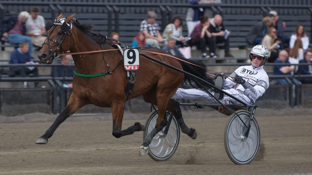 Andre Eklundh er aktuell i kveldens V65-omgang. Foto: Anders Kongsrud/www.hesteguiden.com.